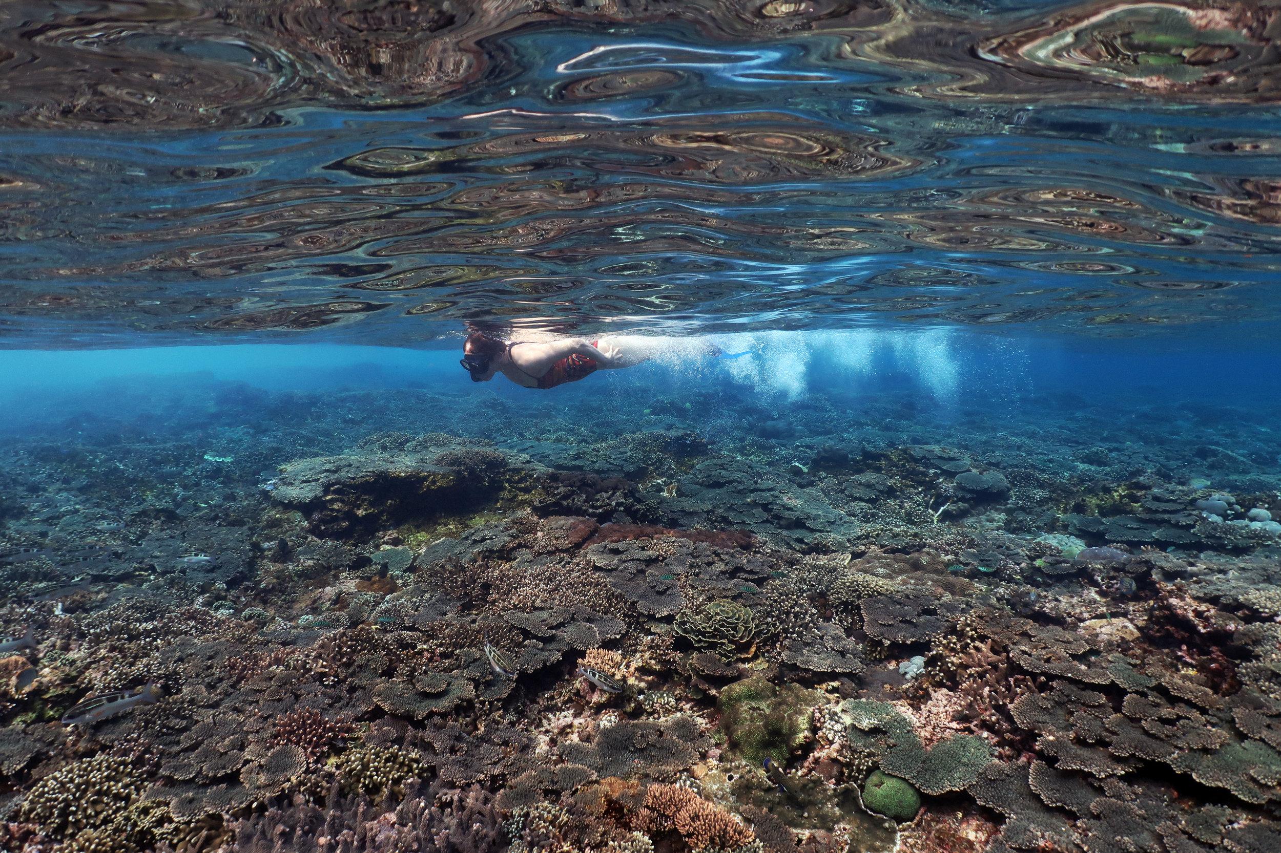 snorkler in nusa penida credit: Anett Szaszi / coral reef image bank