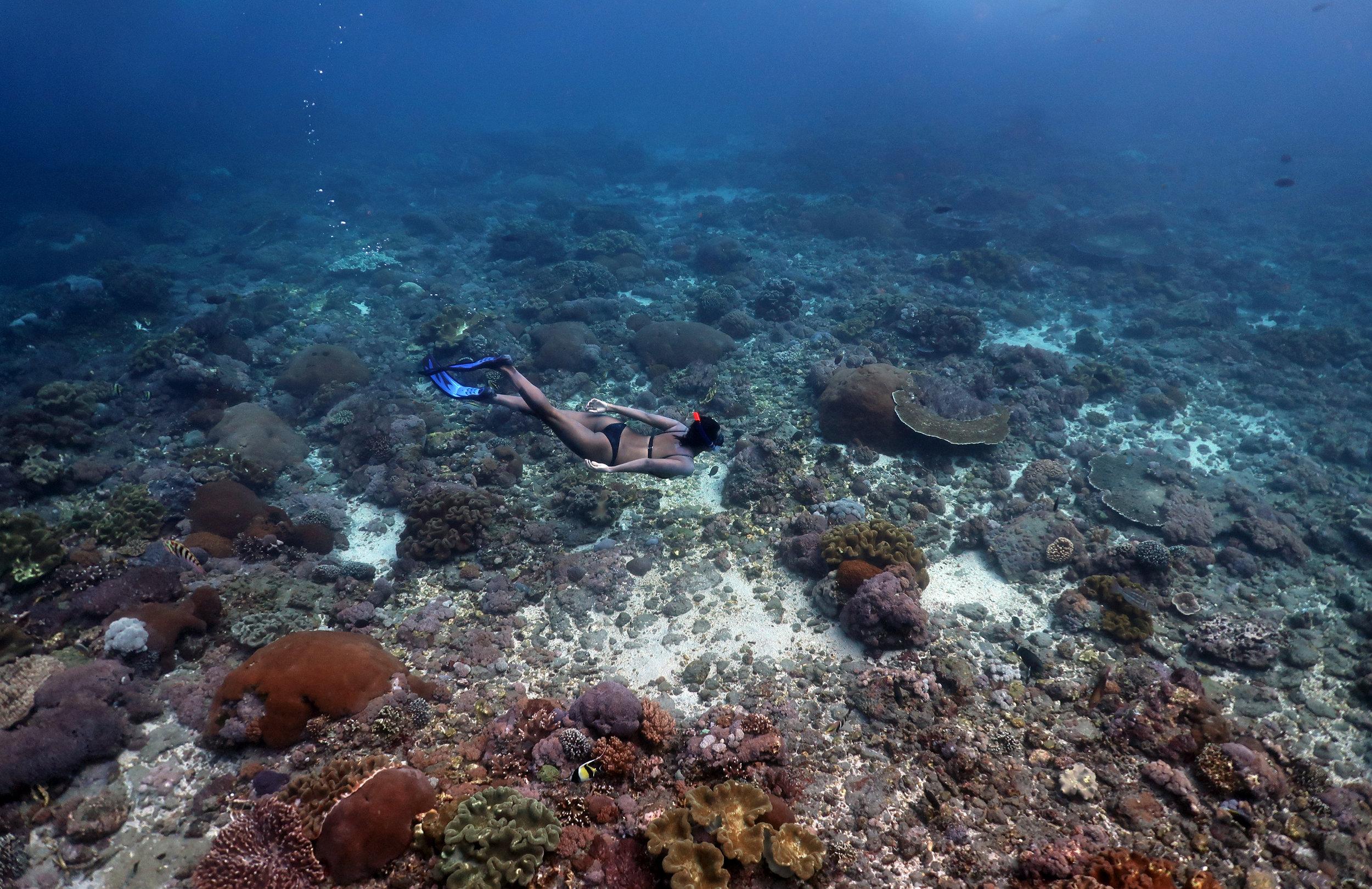 freediver in nusa penida credit: Anett Szaszi / coral reef image bank