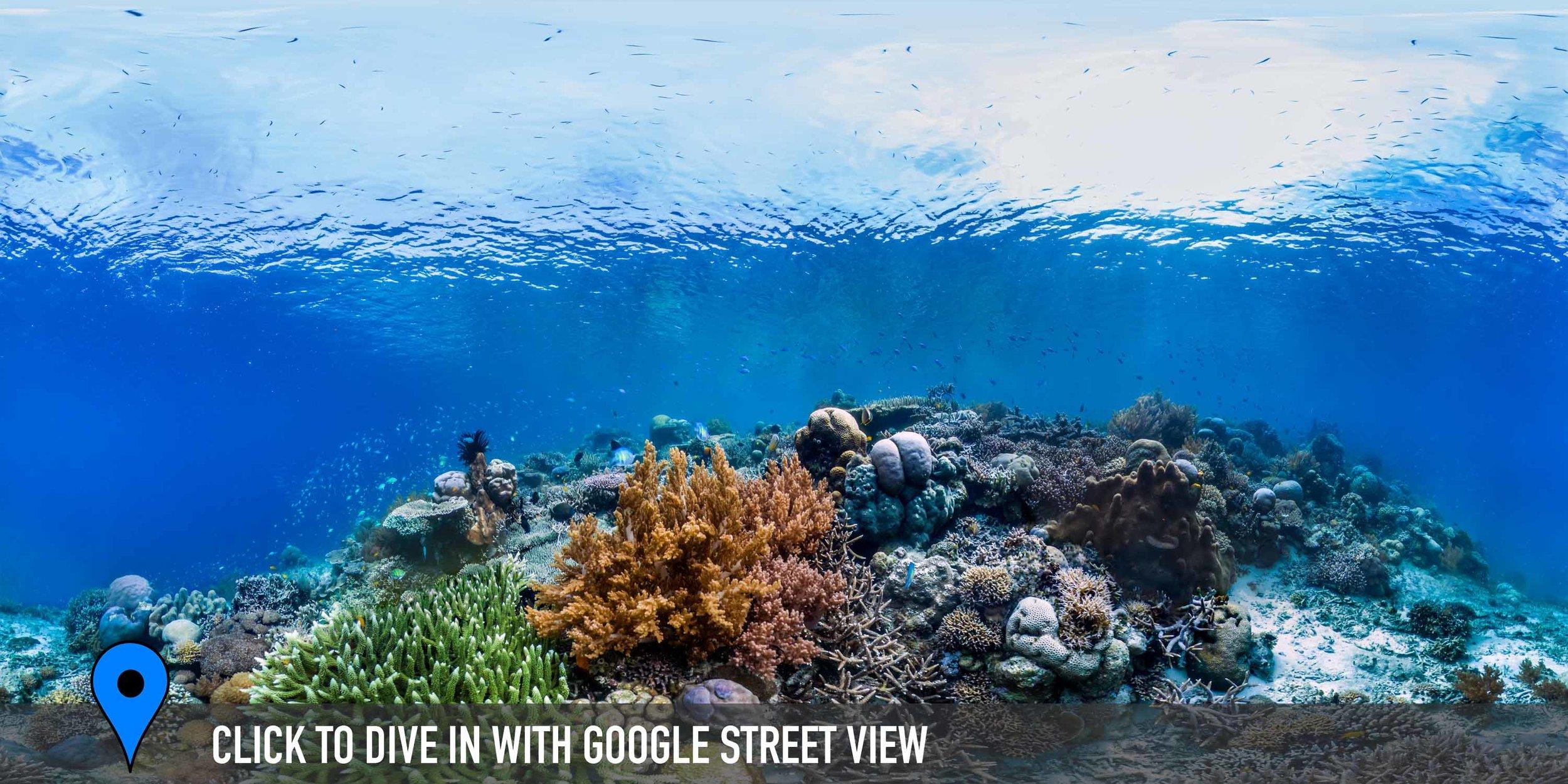 KEURO, RAJA AMPAT, INDONESIA CREDIT: THE OCEAN AGENCY / XL CATLIN SEAVIEW SURVEY