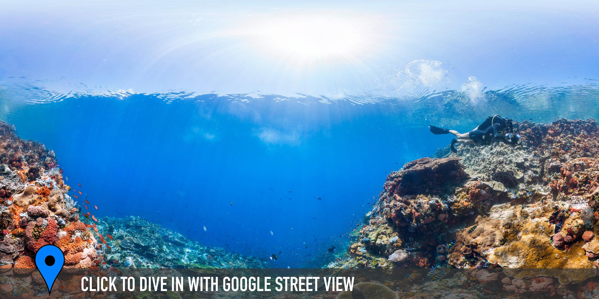 BATU BOLONG, KOMODO, INDONESIA CREDIT: THE OCEAN AGENCY / XL CATLIN SEAVIEW SURVEY