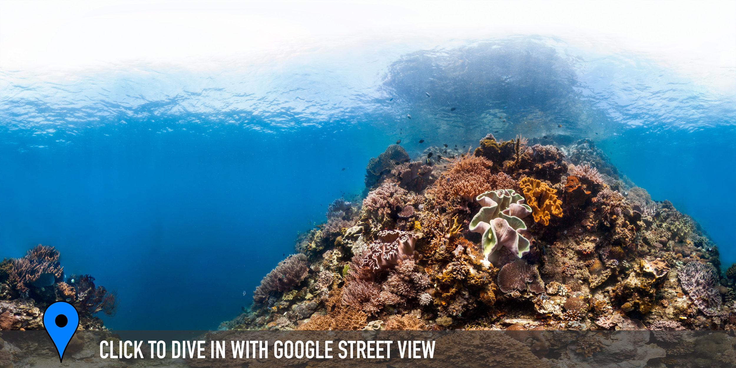 MANADO, INDONESIA CREDIT: THE OCEAN AGENCY / XL CATLIN SEAVIEW SURVEY