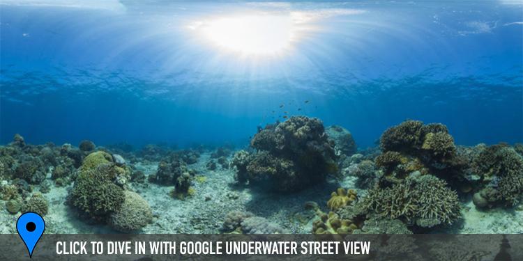 PHILIPPINES CREDIT: THE OCEAN AGENCY / XL CATLIN SEAVIEW SURVEY