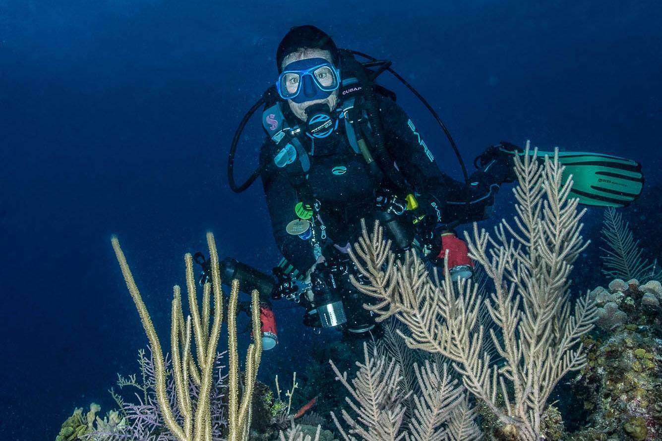 diver with boat, Jardines De La Reina credit: DAVID GROSS / CORAL REEF IMAGE BANK