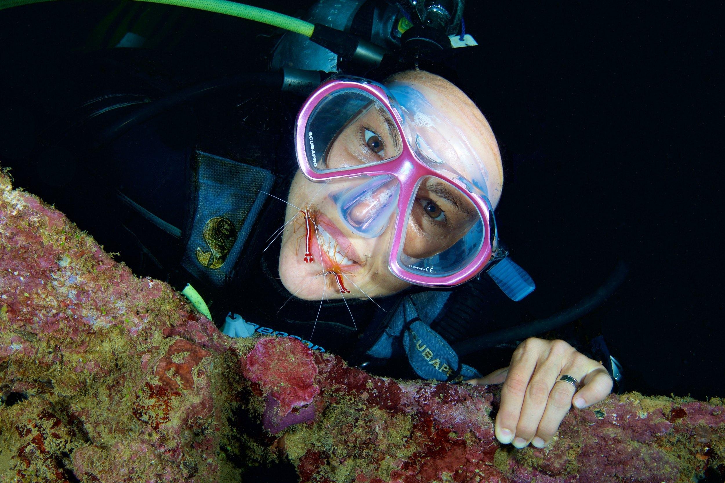 cleaner shrimp on teeth credit: grant thomas / coral reef image bank