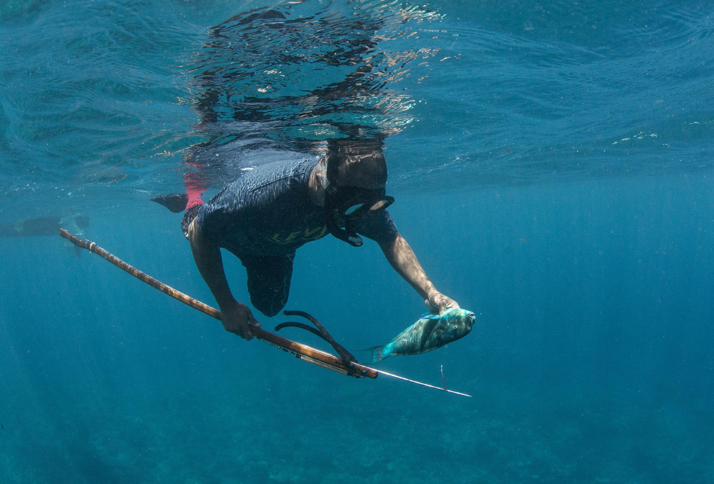 fisherman in palau credit: the ocean agency / coral reef image bank