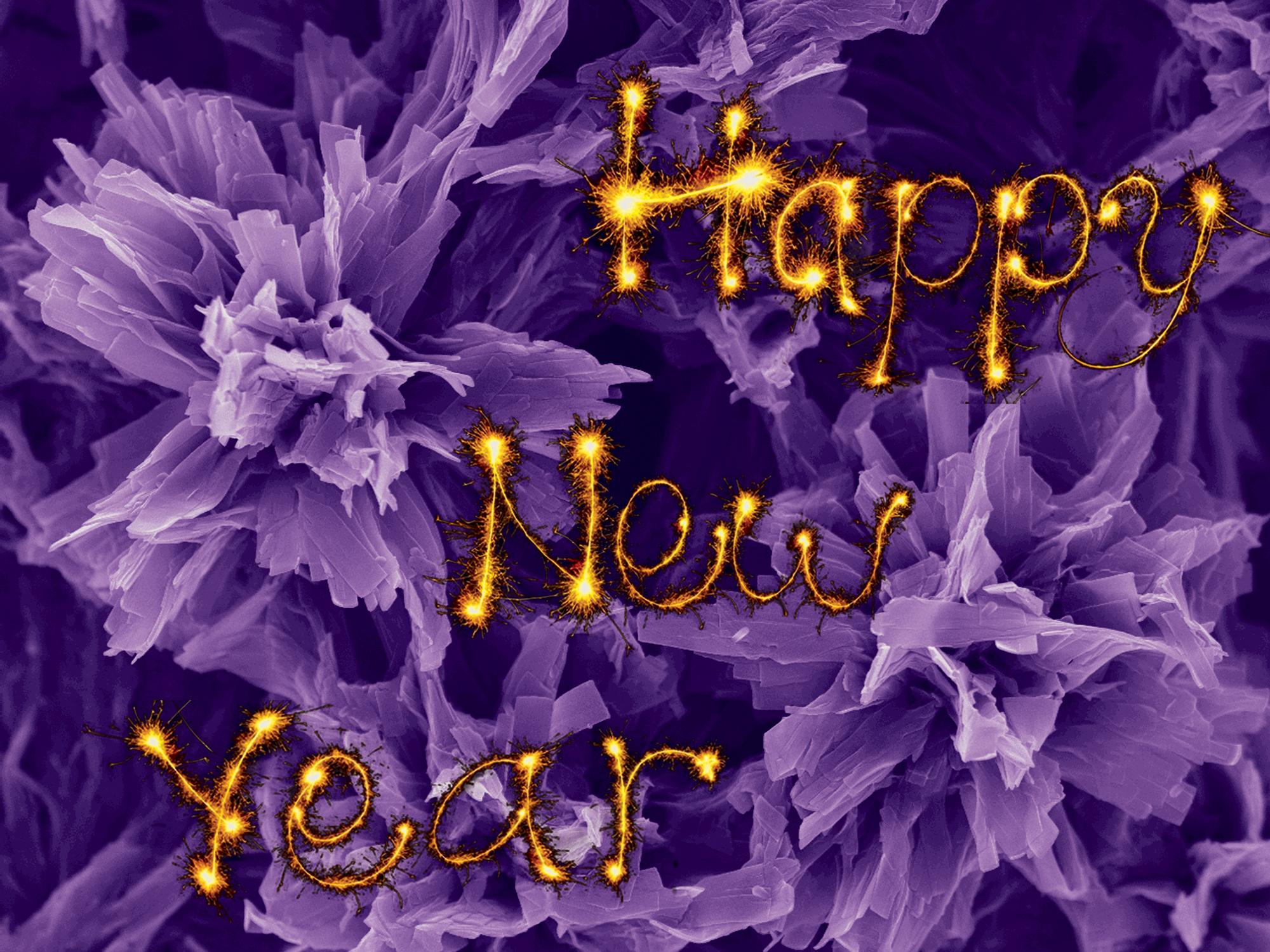 7. Happy New Year