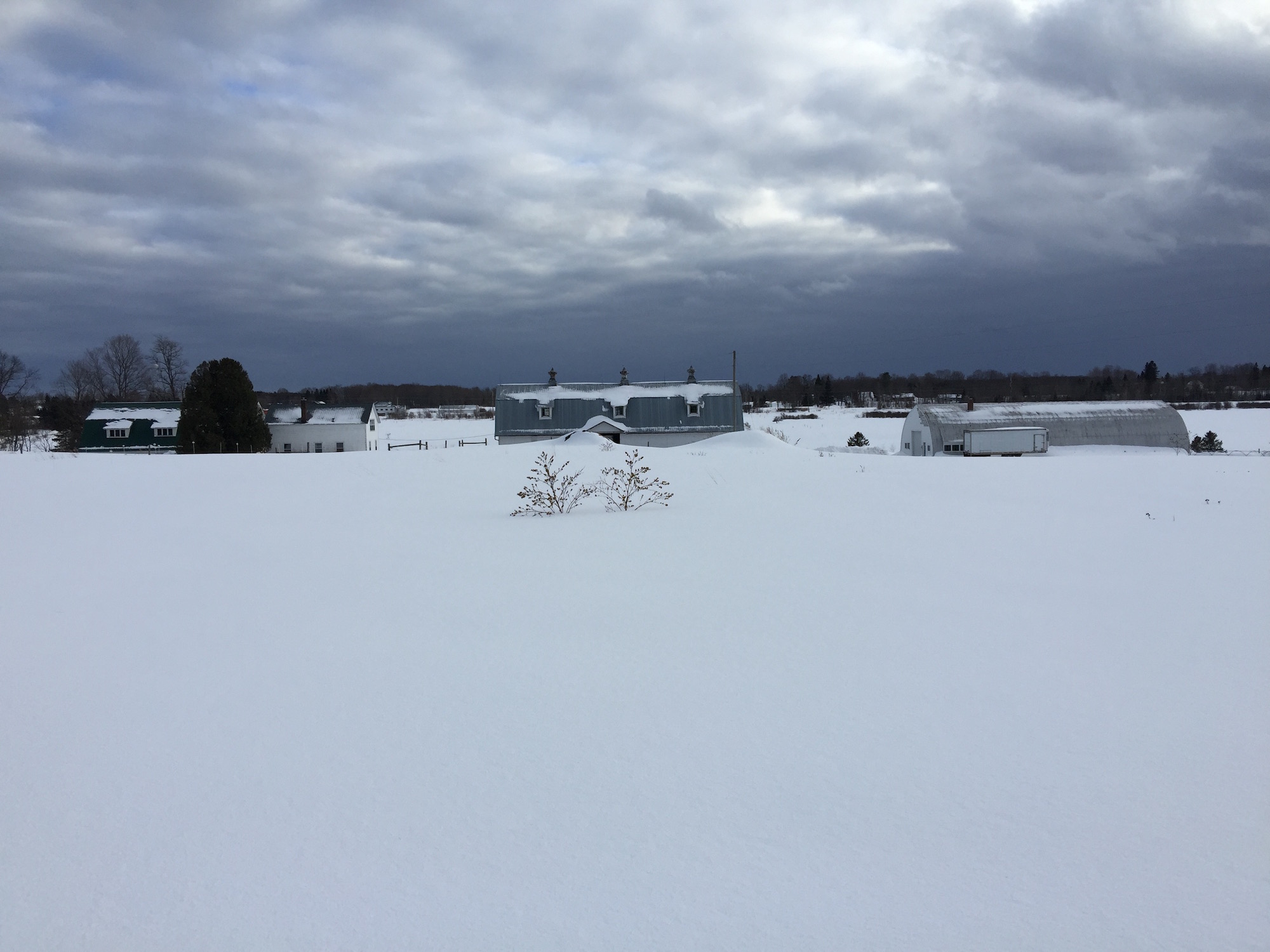 The North Farm! Buried in snow.
