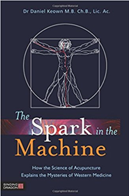 The Spark in the Machine by  Daniel Keown