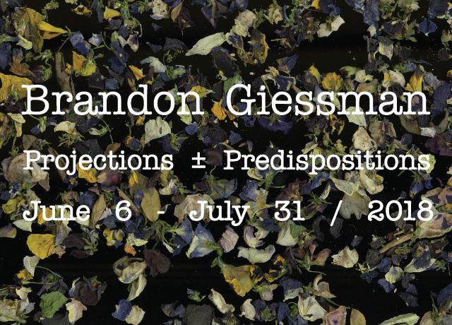 WEB_Giessmann-01.png