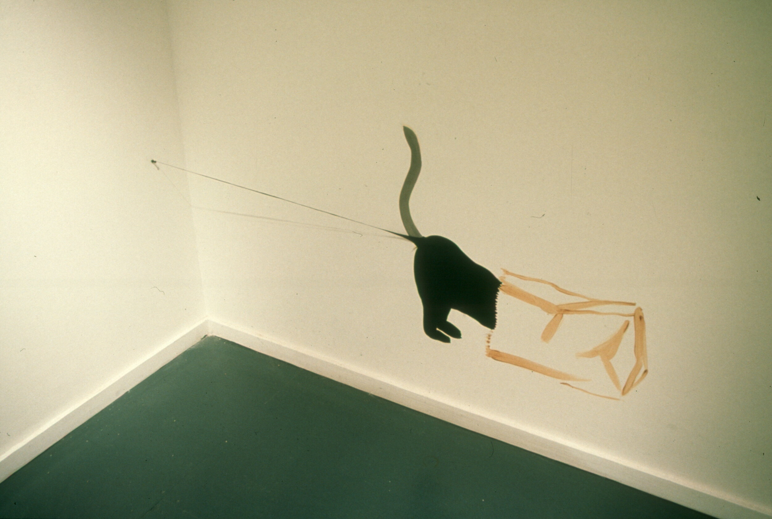 96-07 Brian Jungen (Cat in Bag).jpg