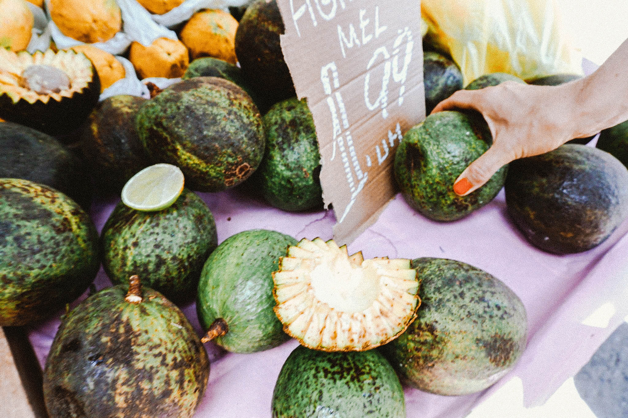 Avocados… some as big as your head!