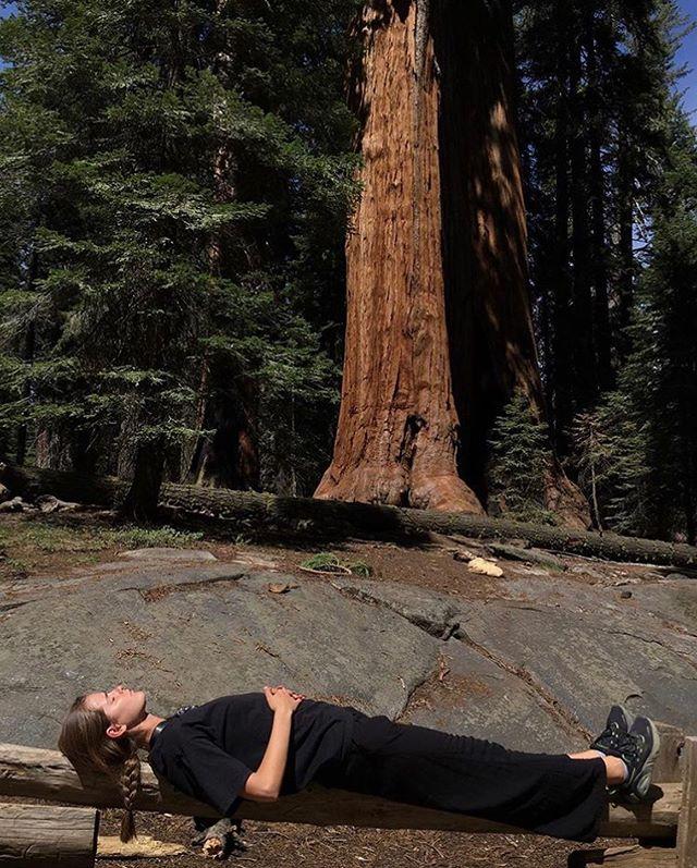 Inga in LA Tee, Sequoia National Park, California, 2019.