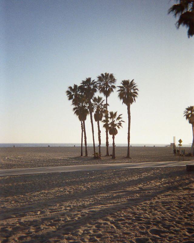 Summer in LA