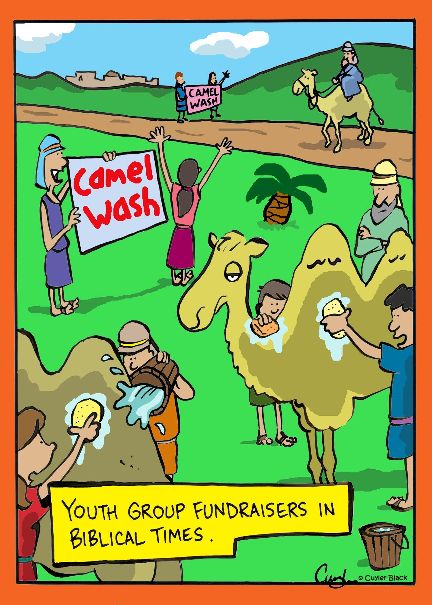 camel wash.jpg