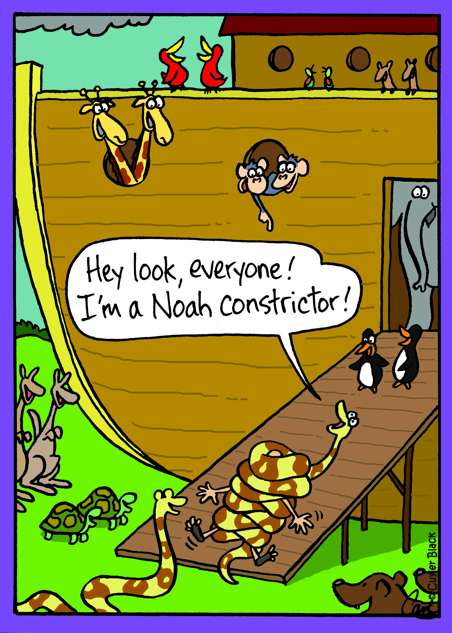 Noah constrictor.jpg