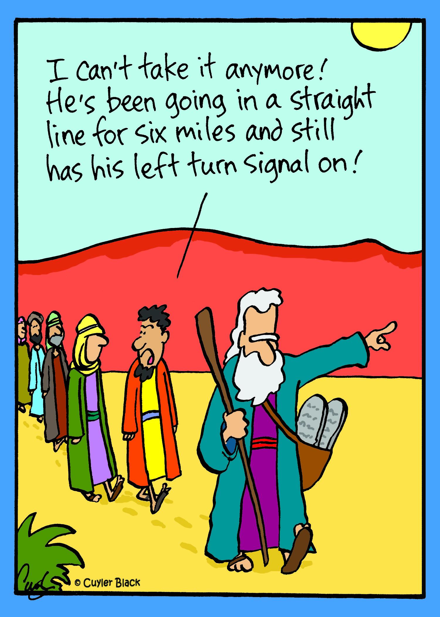 turn signal.jpg
