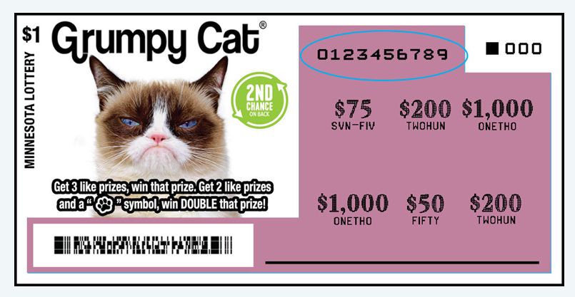 Grumpy Cat dies but the money from the Minnesota Lottery scratch