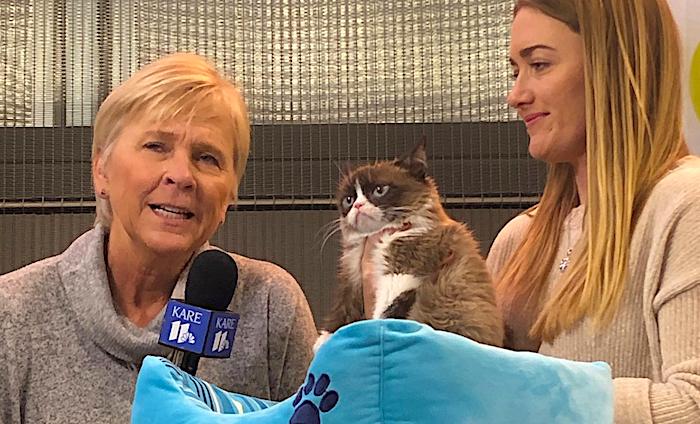 grumpycat-moa-visit.jpg