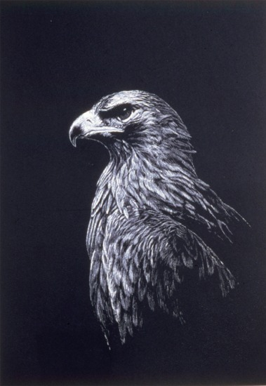 """Golden Eagle""   by Dennis Curry"