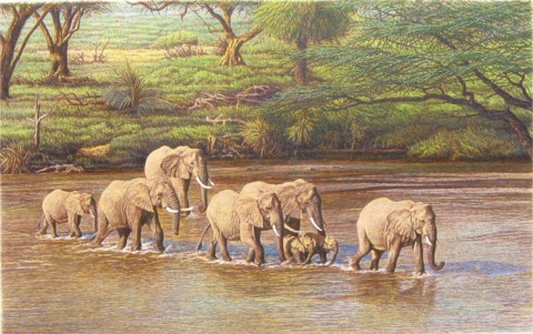 """""""River Crossing""""   by Dennis Curry"""