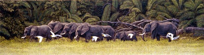 """""""Elephant Walk"""" by Dennis Curry"""