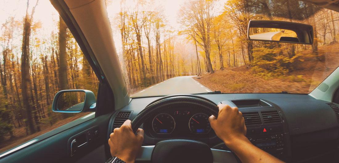 Fall_Driving_FINAL.jpg