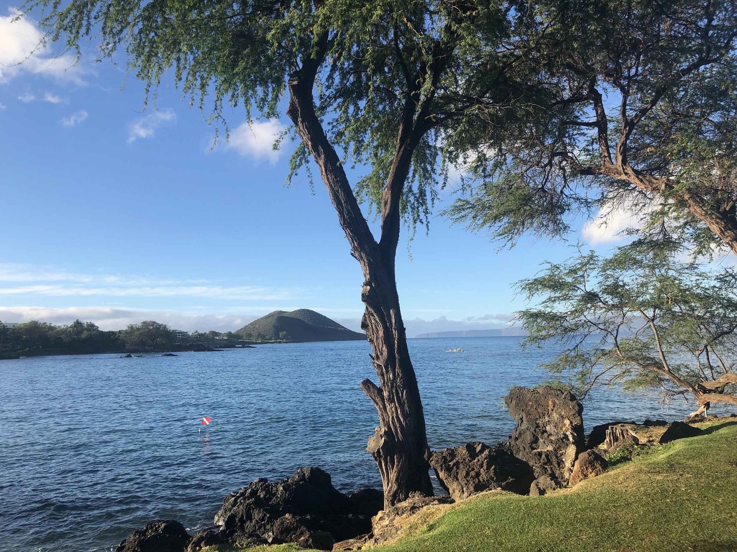 view of the Makena Bay in the early morning, calm waters and great visibility for SCUBA diving.