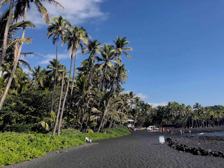 coastline of Punulu'u Bay black sand beach on the big island of Hawaii, USA. boldlygotravel.com