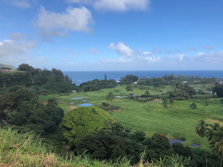 Road To Hana View of Ke'anae peninsula, Maui. boldlygotravel.com