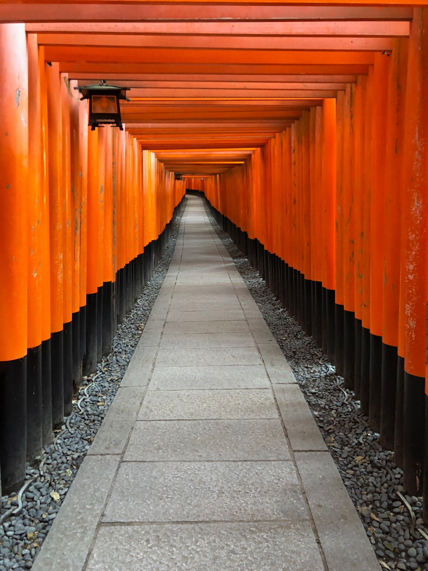 Hundreds of Torii gates at Fushimi Inari-Taisha shrine in Kyoto honor the Shinto god of rice Inari. Each gate has been donated by a Japanese business or group with the hopes of being blessed with success.