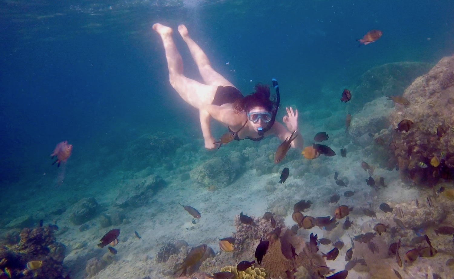 Kelly dives with tropical fish off the cost of Cebu island in the Philippines. boldlygotravel.com