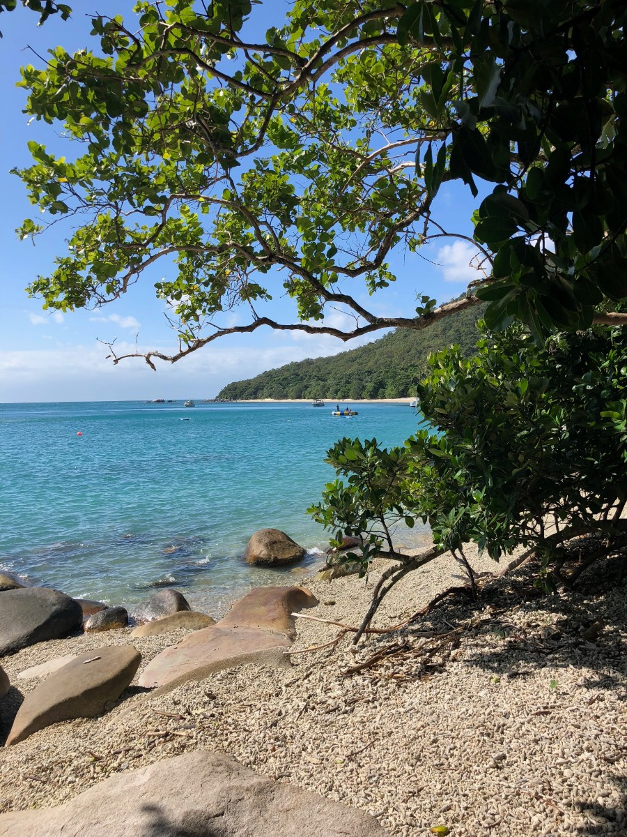 the beaches of Fitzroy Island.