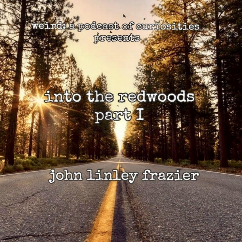 into the redwoods part 1.jpg