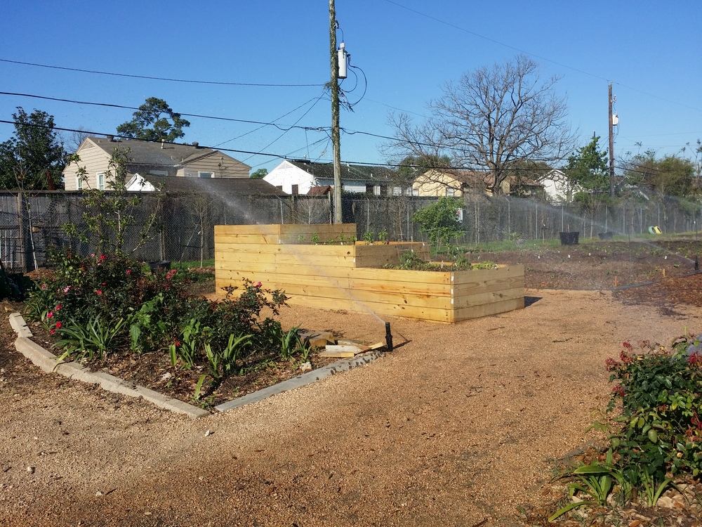 Blodgett Urban Gardens - is a non-profit 501(c)(3) charitable organization dedicated to eradicating the causes of malnutrition and dietary related diseases through gardening and sustainability practices.