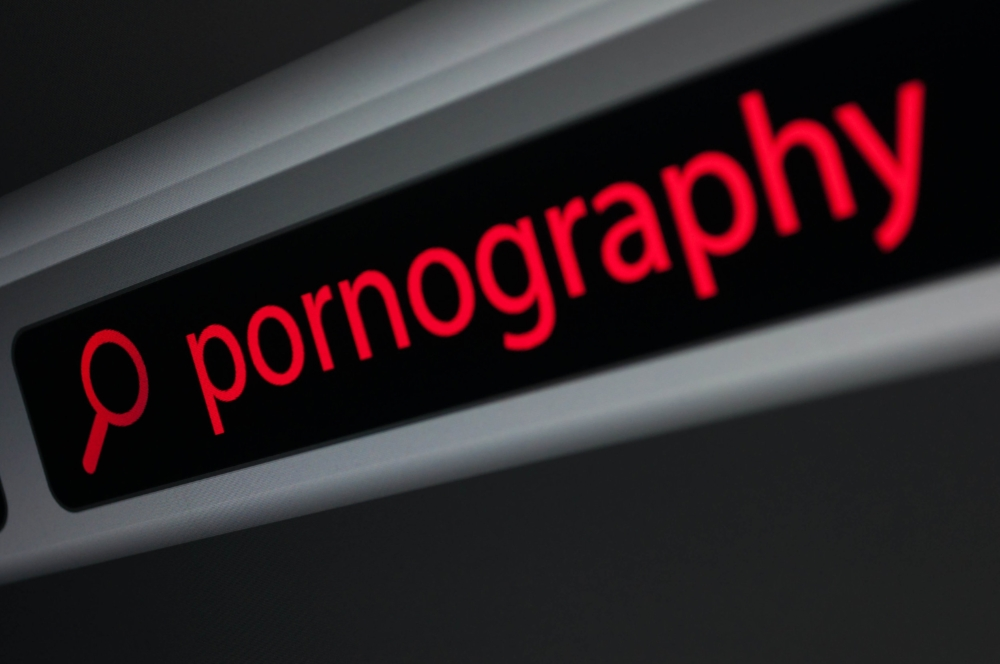 Porn sites receive more regular traffic than Netflix, Amazon and Twitter combined.
