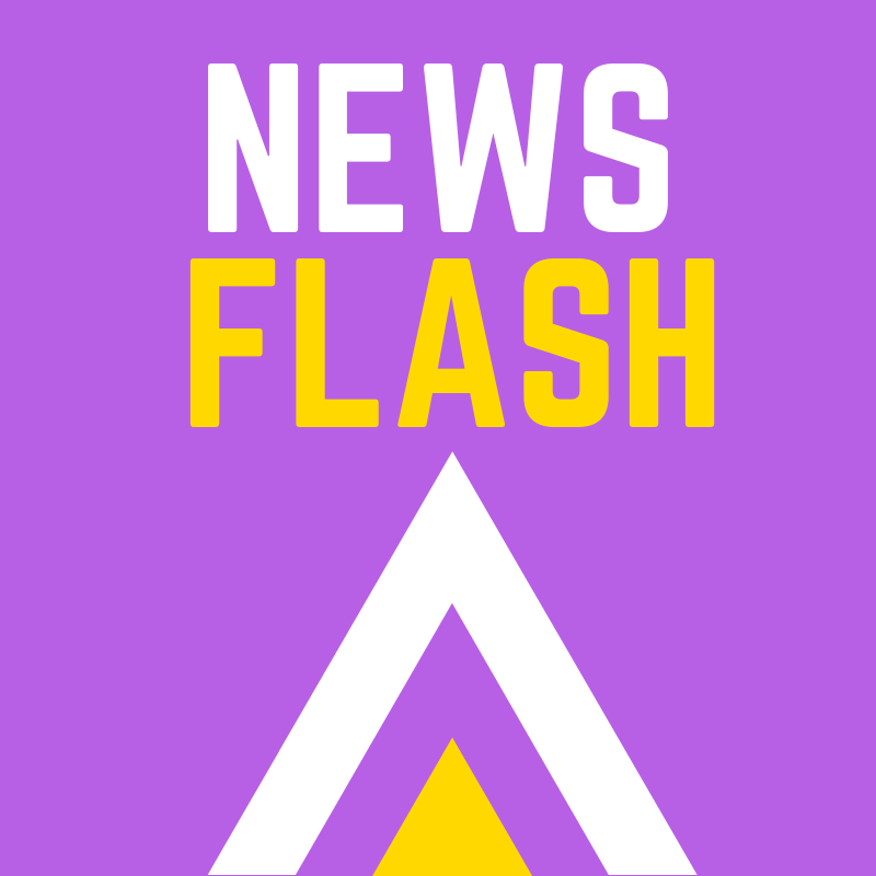 I-WE Newsflash logo.png