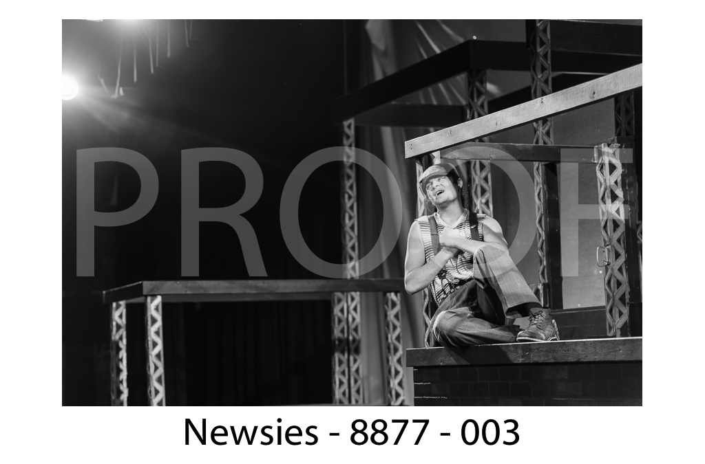 newsies-web2-003.jpg