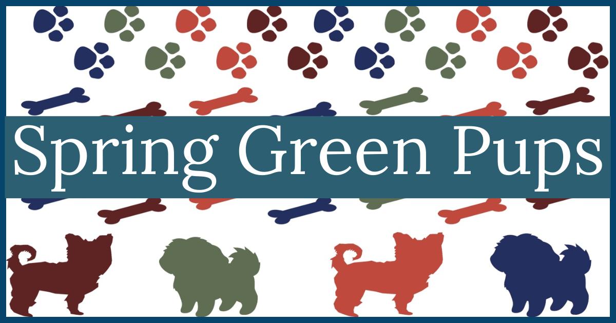 SpringGreenPups — Current Pups