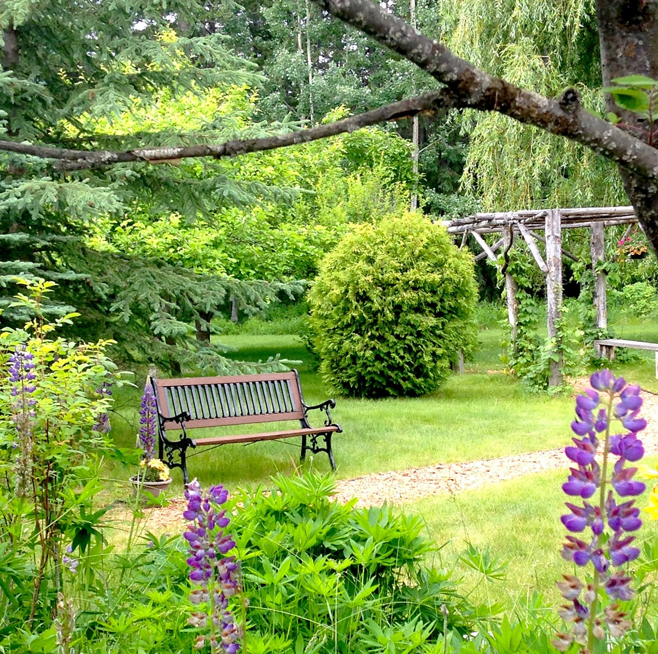 Gardens and Views and Lots of Space to Relax   The lodge is surrounded by beautiful gardens, with flowers in bloom throughout the spring, summer and fall. Find one of our chairs or benches and relax for as long as you'd like.