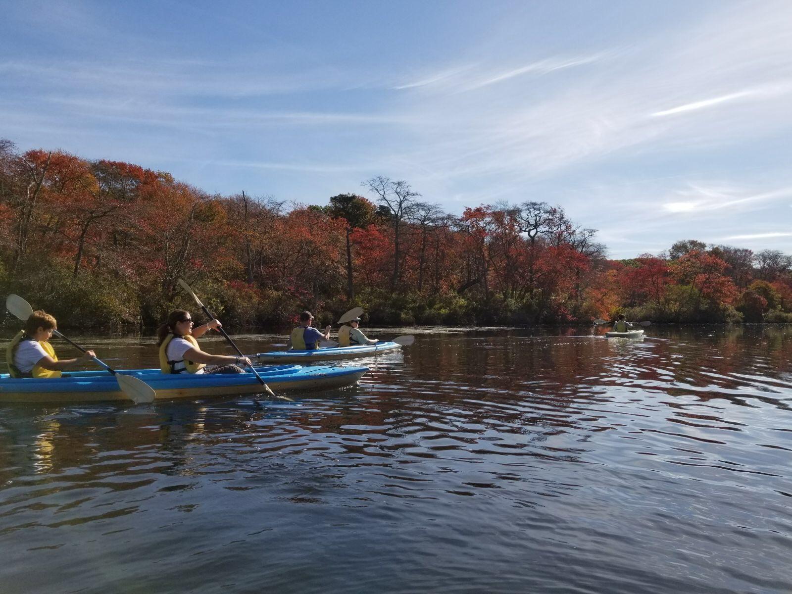Paddling on Carman's River | Fall2017