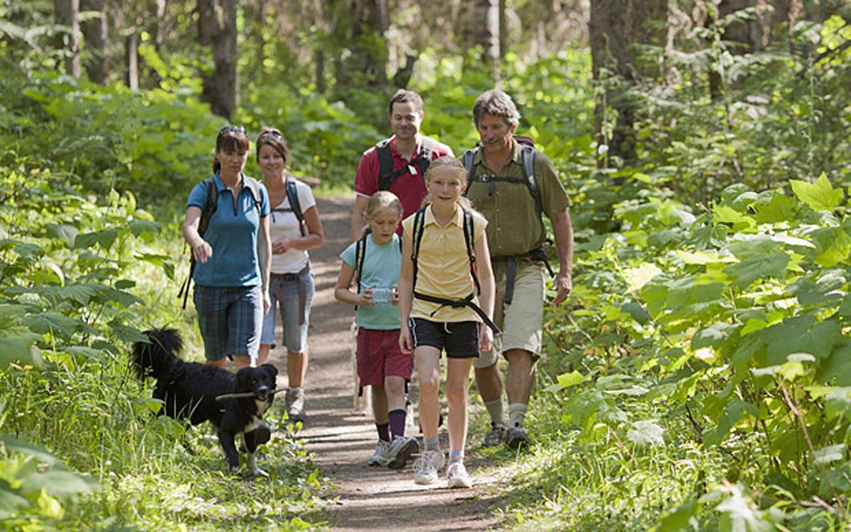 large family hike with dog kliner.jpg