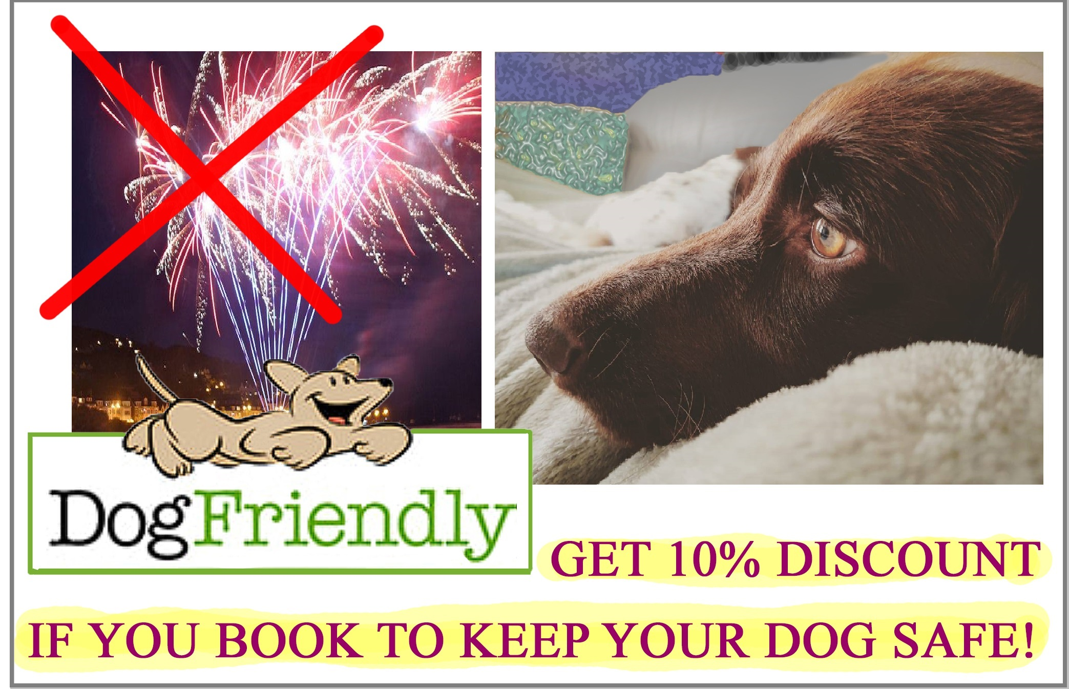 comp fireworks-dog 4 elements discount.jpg