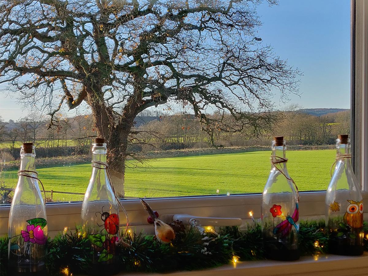 Curlew kitchen window Christmas Eve kleiner.jpg