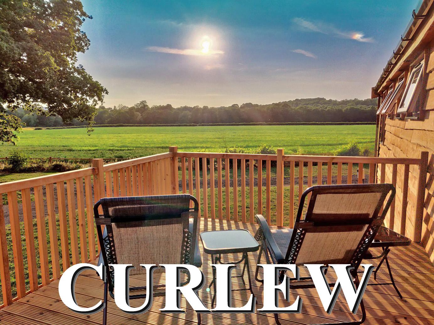 side terrace Curlew met NAAM.jpg