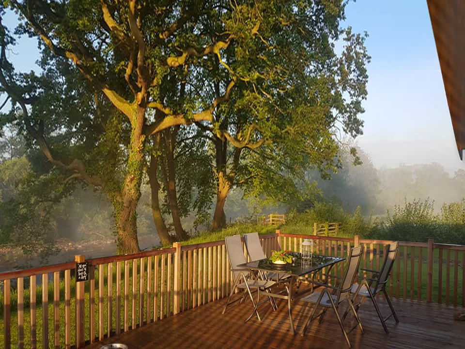 morning dew at terrace Kingfisher 3x4.jpg