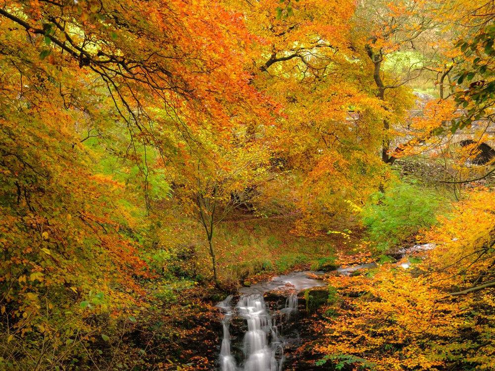 4x3 waterval herfst cropped.jpg
