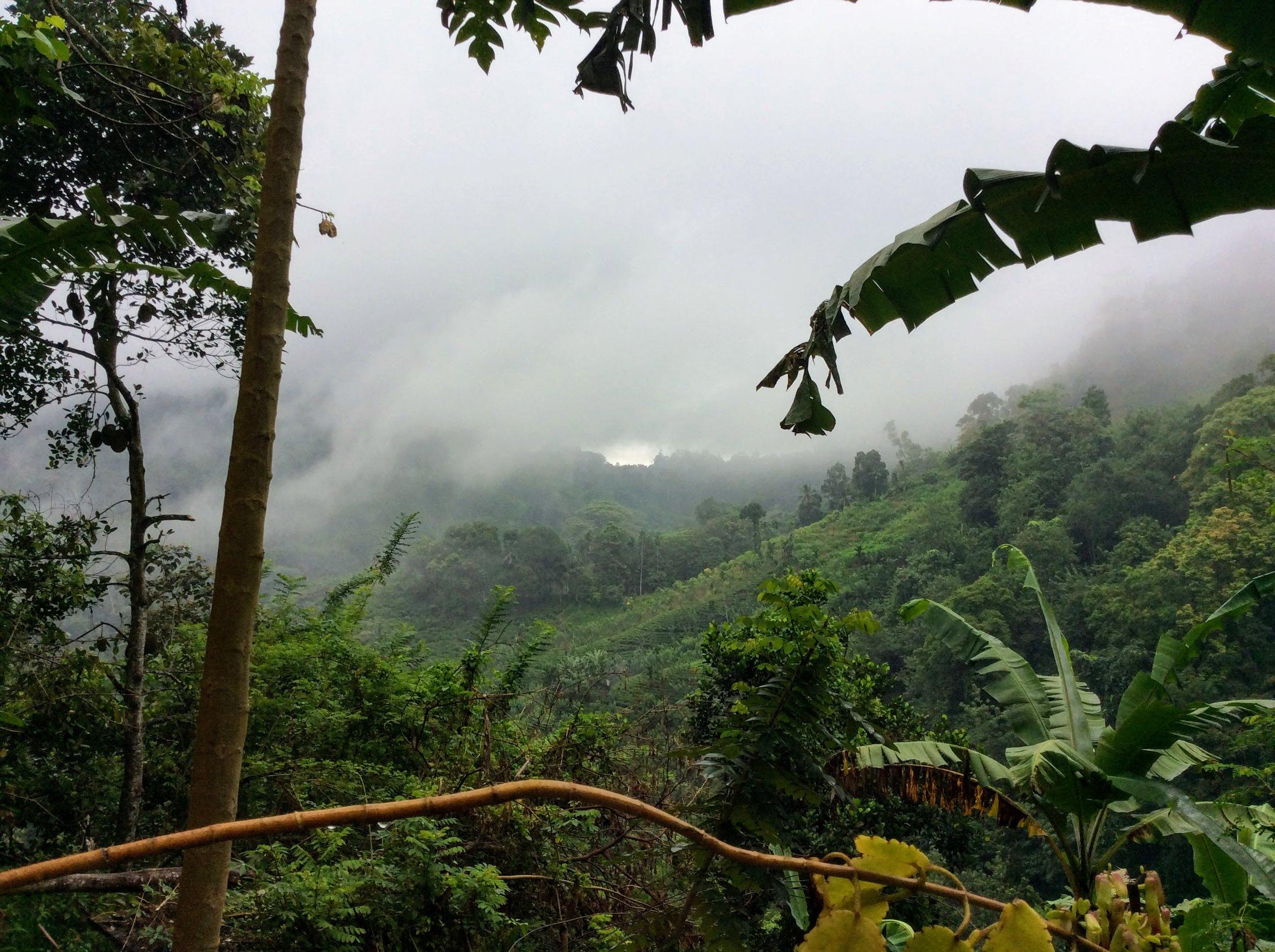 Gen - Valley view 3.jpg