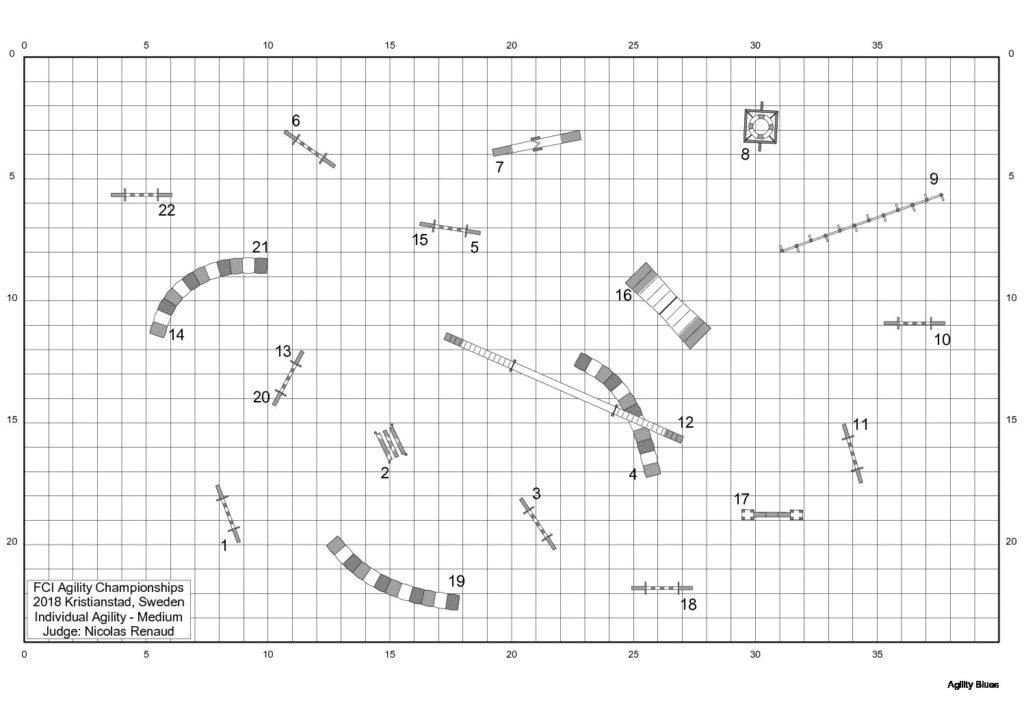 AWC-2018-Individual-Agility-Medium-course-map-Nicolas-Renaud.jpg