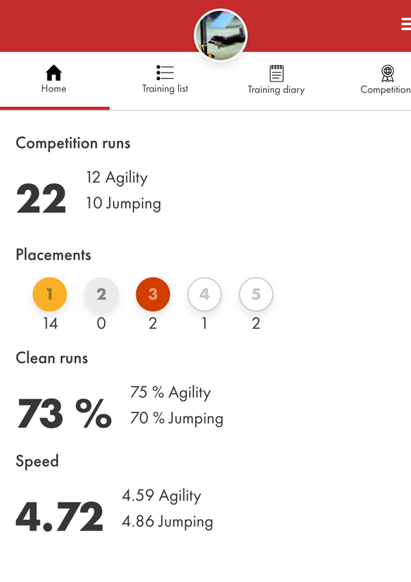 Stats with Dizzy in the AgiNotes app