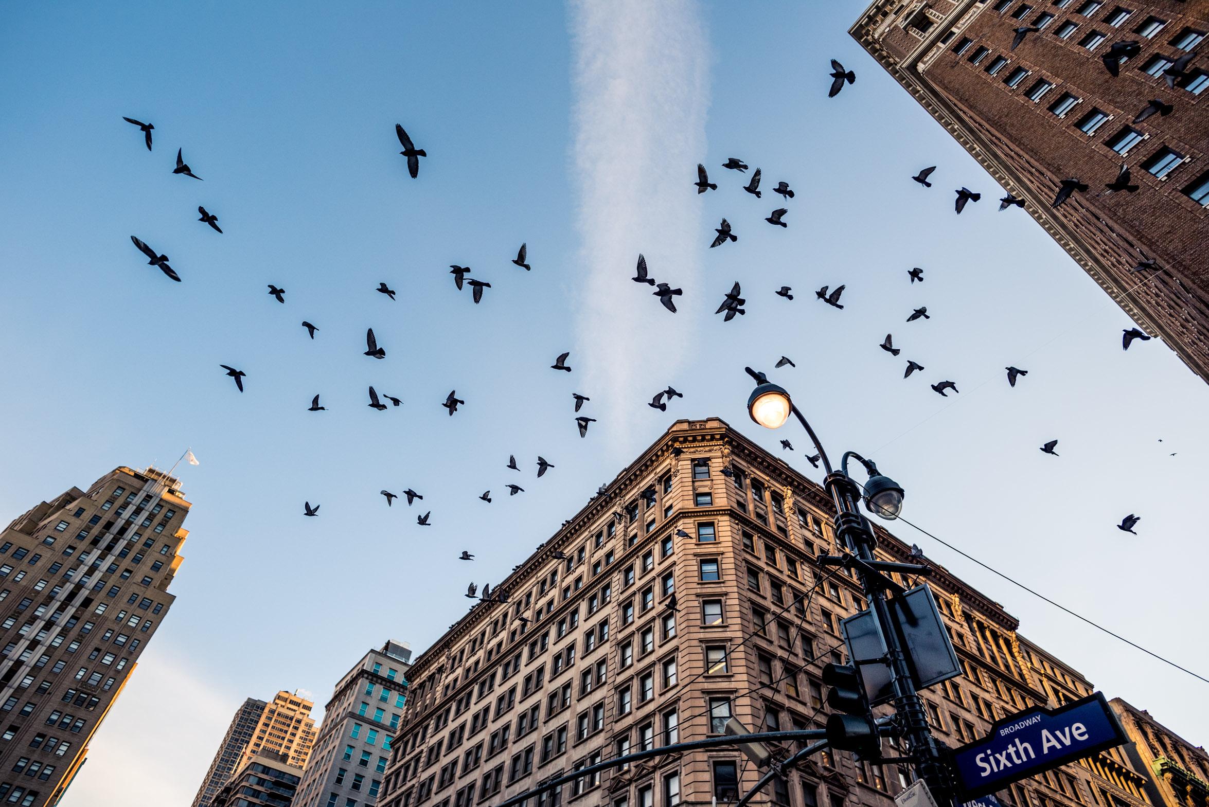 NEWYORK-1292.jpg